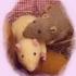Крыска спицами
